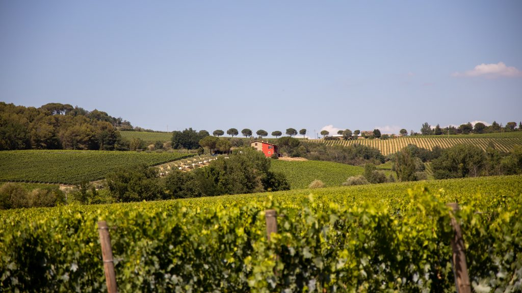 Terre Margaritelli - casa rossa