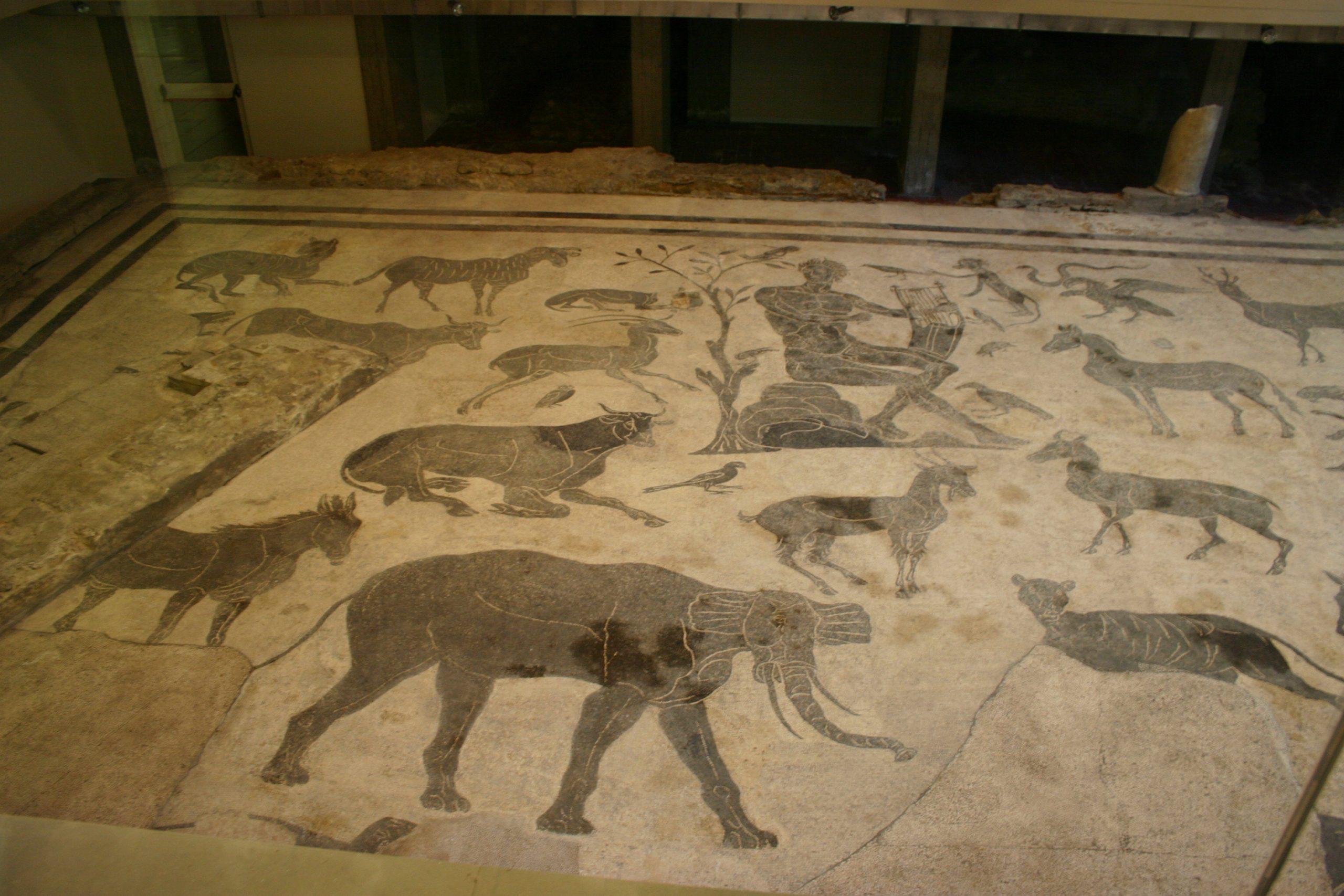 Il mosaico romano di Santa Elisabetta a Perugia: un tesoro ancora poco noto