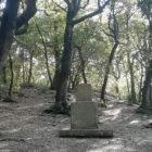 Monteluco